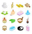 Spa isometric 3d icons set vector image vector image