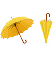Yellow umbrellas vector image