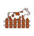 cow farm in fence vector image