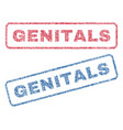 genitals textile stamps vector image vector image