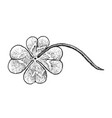 hand drawn of four leaf clovers on white backgroun vector image vector image