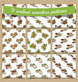 patterns with fresh nuts vector image