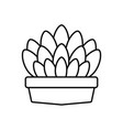 potted succulent plants line style icon vector image vector image