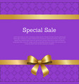 special sale promo poster place for text framed vector image