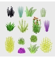 Varieties of plants big set 14 icons vector image vector image