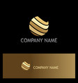 sphere abstract technology gold logo vector image vector image
