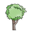tree plant nature ecology vector image vector image