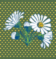 Hand drawn Chamomile flower vector image