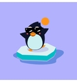 Penguin Wearing Sunglasses on the Iceberg vector image
