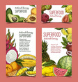 exotic and tropical fruits on banner or poster vector image