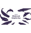 festive banner with text world whale and dolphin vector image vector image