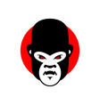 Gorilla mascot Head of wild animal Aggressive vector image
