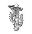 sombrero on a cactus sketch vector image