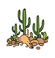 cactus cow scull and stones vector image vector image