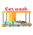 car wash services promotional marketing vector image