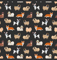 cute decorative dogs pattern vector image vector image