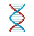 DNA cartoon icon isolated on white background vector image vector image