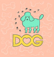 dog cute poodle funny caricature animal vector image vector image