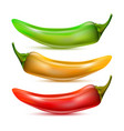 hot chilli pepper set isolated vector image