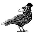 mister crow mascot vector image