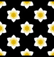 narcissus bloom flower seamless pattern black vector image vector image