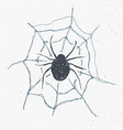 spider and web vintage label hand drawn sketch vector image