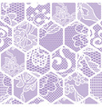 White lace fabric seamless pattern vector image