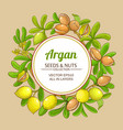 argan branches frame on color background vector image vector image