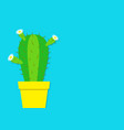 cactus icon in the pot white daisy chamomile vector image