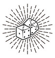dice with rays monochrome vector image vector image