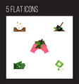 flat icon plant set of plant packet soil and vector image