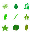 leaf icons set cartoon style vector image vector image