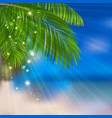 sea sand palm vector image vector image
