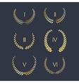 set golden laurel wreath vector image