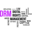 word cloud drm vector image