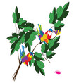 birds and leafs vector image vector image