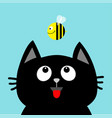 black cat head looking at honey bee insect red vector image