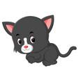 cute cats cartoon vector image vector image
