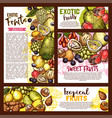 exotic tropical fruits sketch vector image vector image
