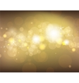 golden festive background vector image vector image