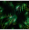 Jungle Night Background vector image vector image