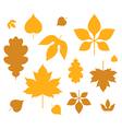 Leaf Autumn vector image vector image
