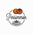 persimmon fruit logo round linear vector image vector image