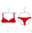red bra and panties on a hangers vector image