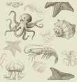 seamless pattern with aquatic animals vector image vector image