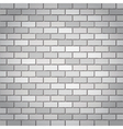 whtie bricks vector image vector image