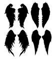 wings silhouettes drawing black white set 5 vector image vector image