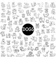 dog characters big set vector image vector image