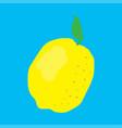 fresh fruit lemon vector image vector image