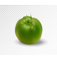 green realistic isolated tomato 3d tomato vector image
